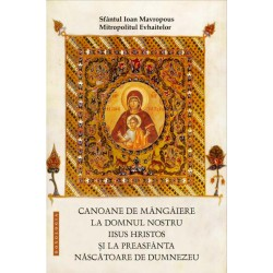 Canoane de mangaiere la Domnul nostru Iisus Hristos si la Preasfanta Nascatoare de Dumnezeu - Sfantul Ioan Mavropous, Mi