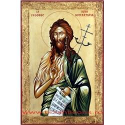 Icoana Pictata - Sf. Prooroc Ioan Botezatorul