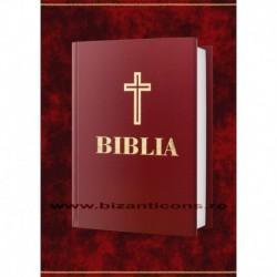 Biblia pentru batrani