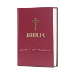 71-293 BIBLIA Centenar - 17x25 - MARO - mare
