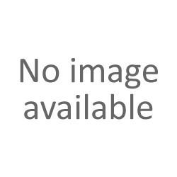 Το εικονίδιο με το ασημωμένο - Αγία Μητέρα Parscheva Ιάσιο 36x44cm K700-146